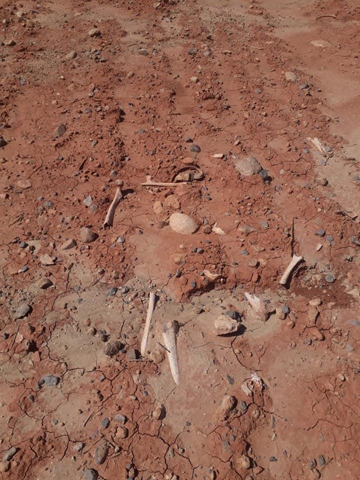 من يرد الاعتبار لعظام موتى ضريح سيدي عثمان بميدلت…؟ ؟