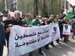 سخرية فلسطينية عارمة على مواقع التواصل الاجتماعي على مطالب علماء الدين الجزائريين